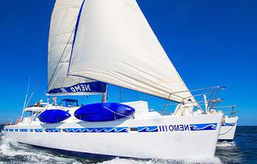 Nemo III Galapagos Sailor