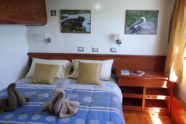 Standard Cabin at Angelito Galapagos Yacht