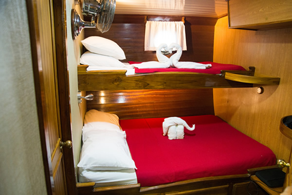 Beagle Galapagos Vessel Double Room
