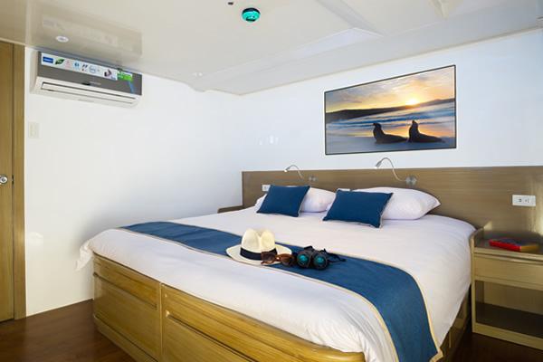 Cabin at Calipso Galapagos Yacht