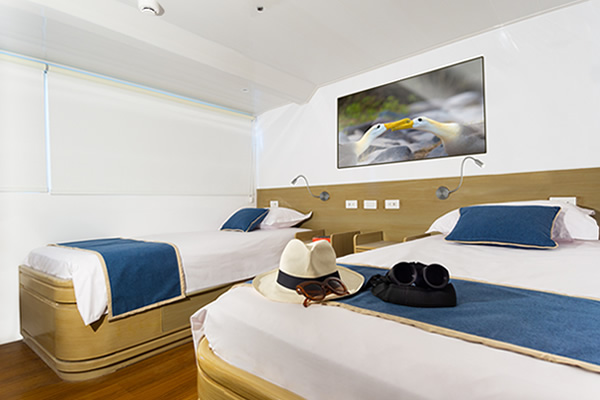Double Room at Calipso Galapagos Yacht