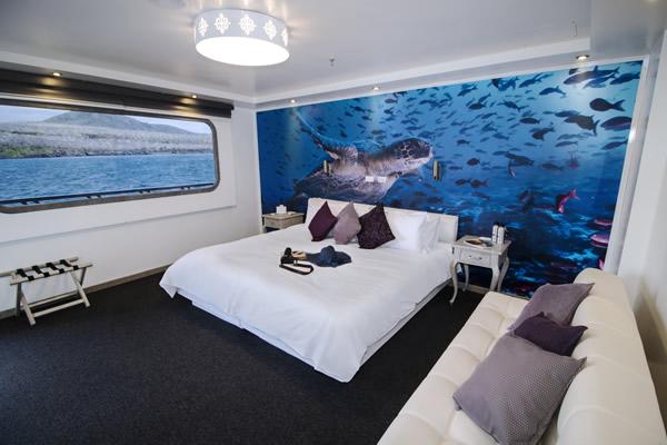 Standard Cabin - Calipso Galapagos Catamaran