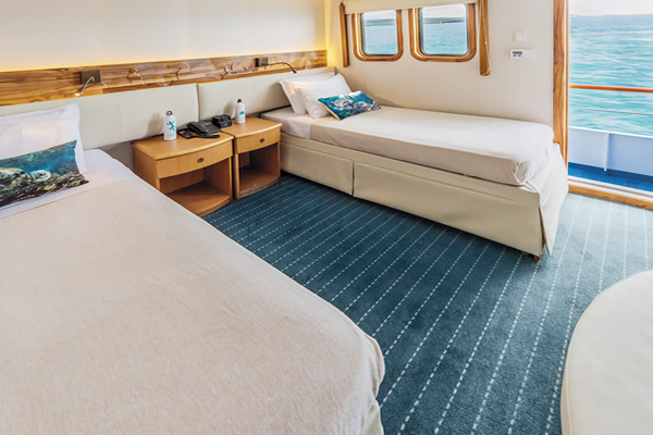 Galapagos Yacht Coral - room
