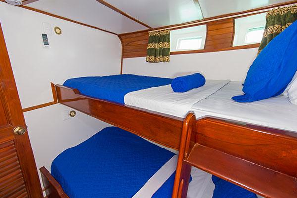 Standard Cabin at Estrella del Mar Galapagos Yacht