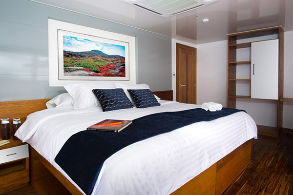 Standard Room at Infinity Galapagos Luxury Cruise