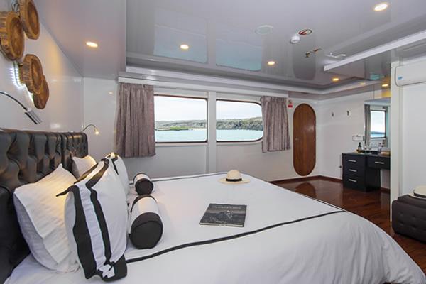 Stateroom at Petrel Catamaran