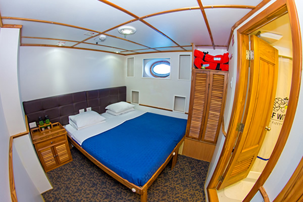 Cabin at Lower Deck of the Tip Top IV Galapagos Cruise